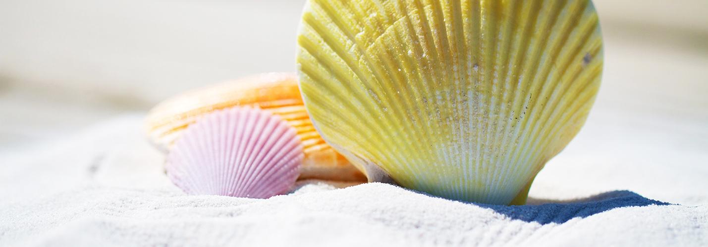 seashelles-self-catering-beach-ocean-apartments-umhlanga-rocks-kzn-south-africa